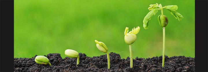 Persönliche Entwicklung, Wachstum, Veränderung - © weerapat1003 - Fotolia.com